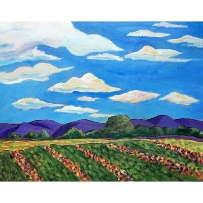 Summer Fields -- Marne Jensen