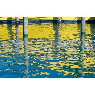 Harbor Reflections -- Rob Tilley