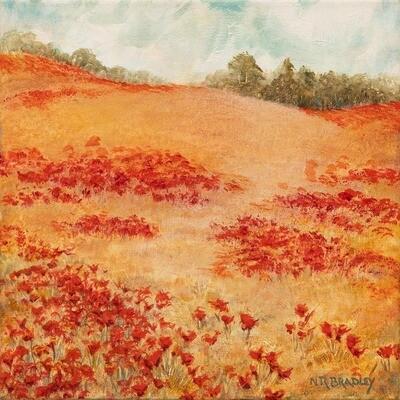 Poppy Field -- Nancy R Bradley