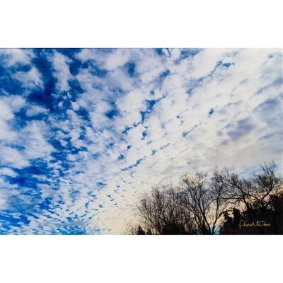 Juanita Bay Cloudscape -- Phyllis McDaniel