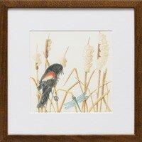 Redwing Blackbird Defending Territory Amongst Cattailss -- Sylvia Portillo