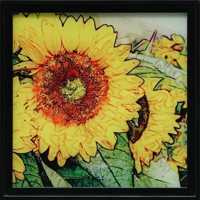 Sunflowers -- Jean Burnett