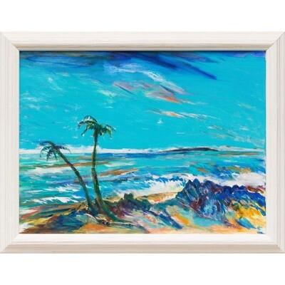 Turtle Beach, Maui -- Forrest Goldade