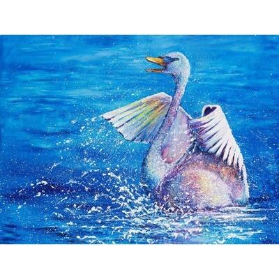 Splash -- Kimberly Adams