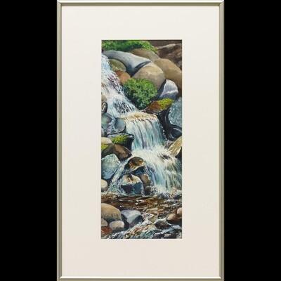 Hikers' Delight -- Nancy R Bradley