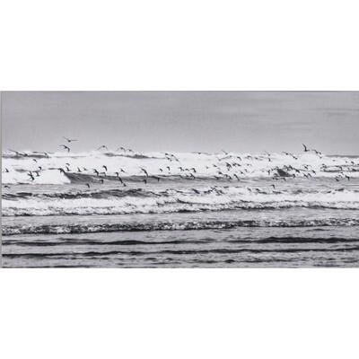 Riding the Wave -- Stephen Zapantis