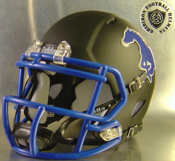 Friendswood Mustangs HS 2013 (TX) - mini-helmet