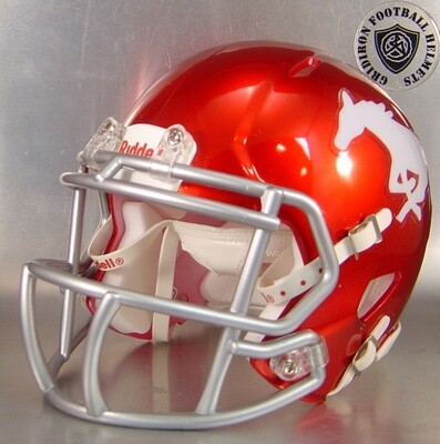 Grapevine Mustangs HS 2017 (TX) (mini-helmet)
