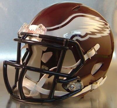 Garland Rowlett Eagles HS 2013-2014 (TX) (mini-helmet)