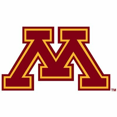 2019 Minnesota