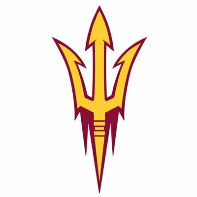2014 Arizona State - SL team sheet
