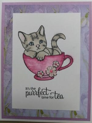 Kitten Two