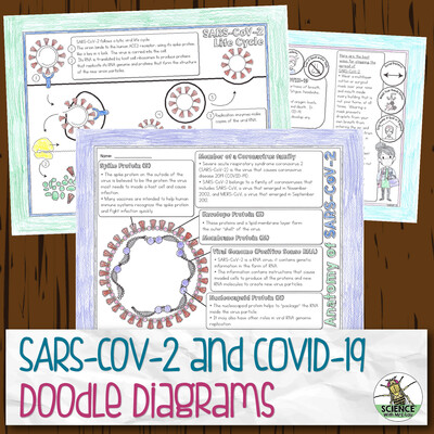 SARS-CoV-2 and COVID-19 Doodle Diagram Notes