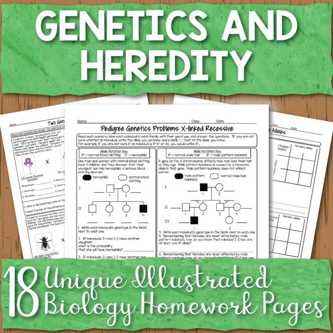 Genetics Homework Pages