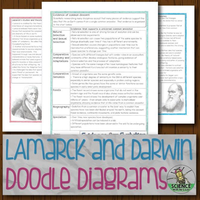 Lamarck and Darwin Doodle Diagrams