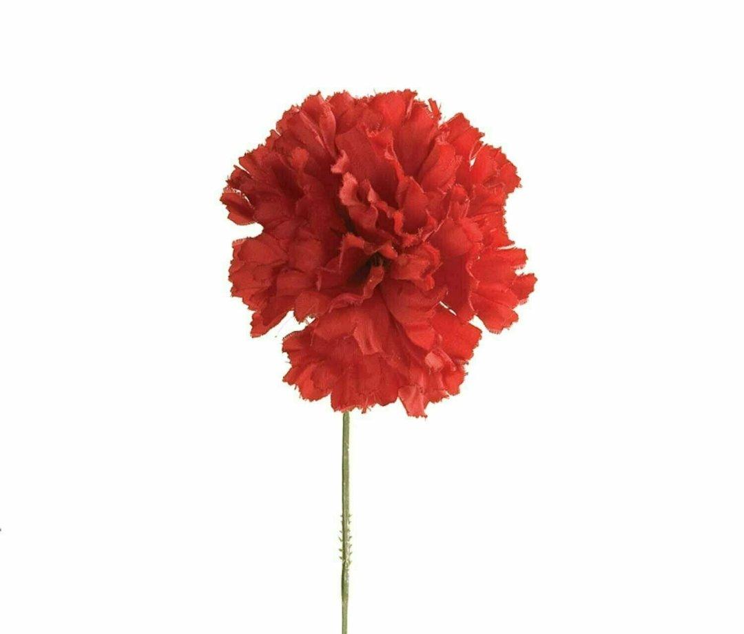S3000RED - Carnation Pick $18.75 ( Box 100)