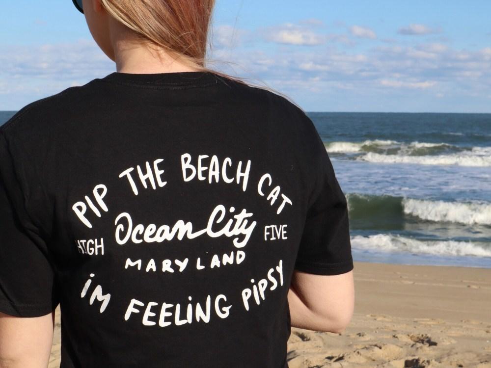 Pip the Beach Cat Text Logo Tees