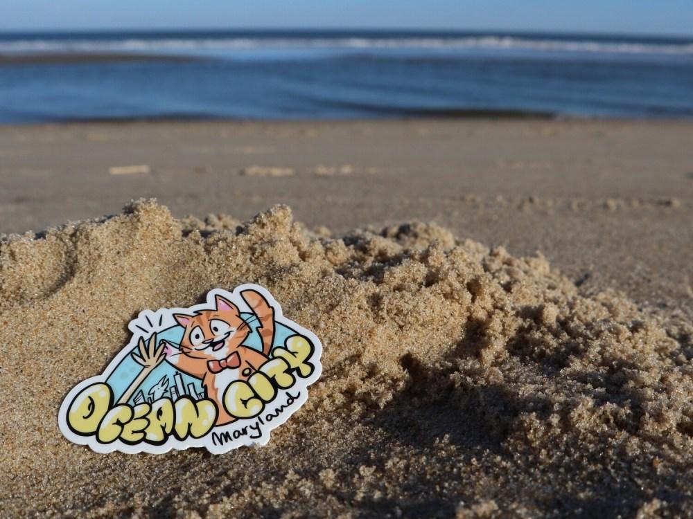 Ocean City Maryland Skyline with High-Five Pip the Beach Cat 3