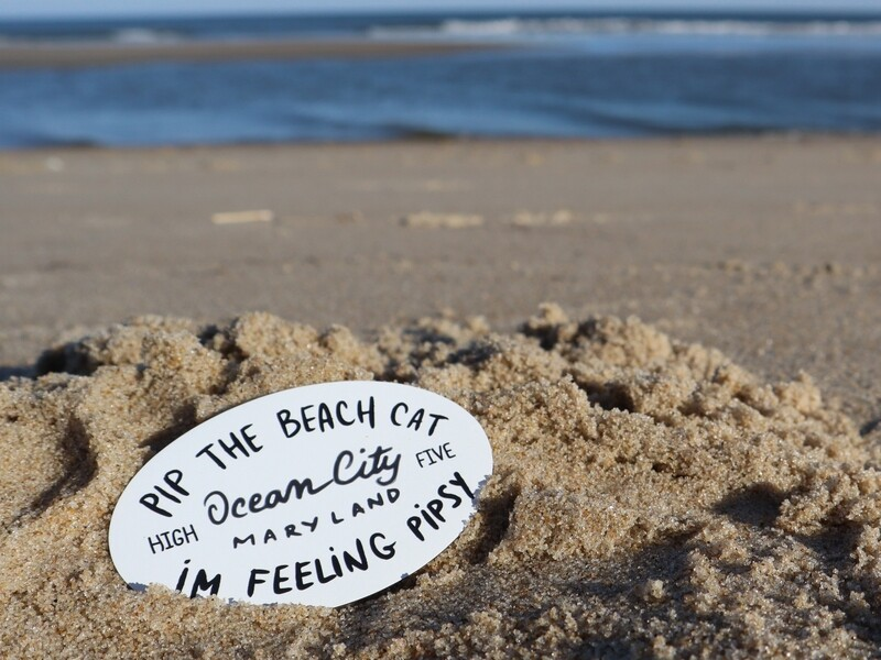 Pip the Beach Cat Ocean City Text Magnet