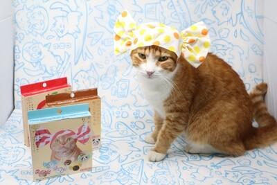 Mystery Blind Box Cat Cap: Candy Edition (Kitan Club)