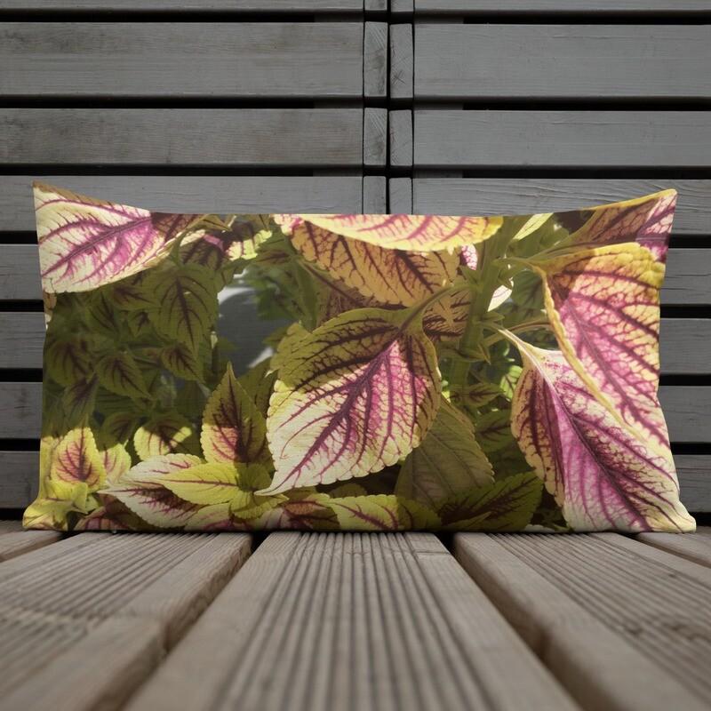 Yellow and Red Coleus Leaf Premium Pillow