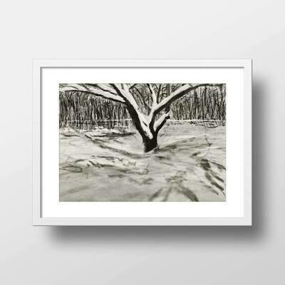 Dogwood in Winter | Giclée Print