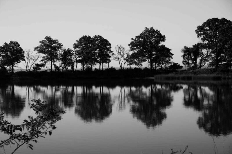 """Eagle Pond"" Black & White Print"