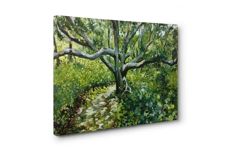 White Oak on Chappy | Print on Canvas