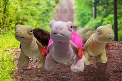 Aldabra Tortoise soft toy