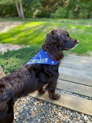 Dog Bandanas - PERSONALIZED - Slips on Collar
