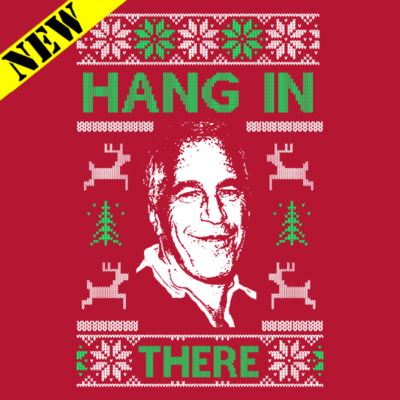Sweatshirt - Christmas Sweater - Hang In There