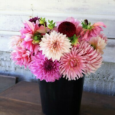 Dahlia Flower Bucket