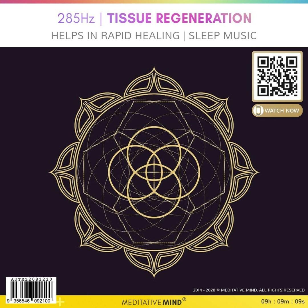 285Hz | Tissue Regeneration - Helps in Rapid Healing | Sleep Music