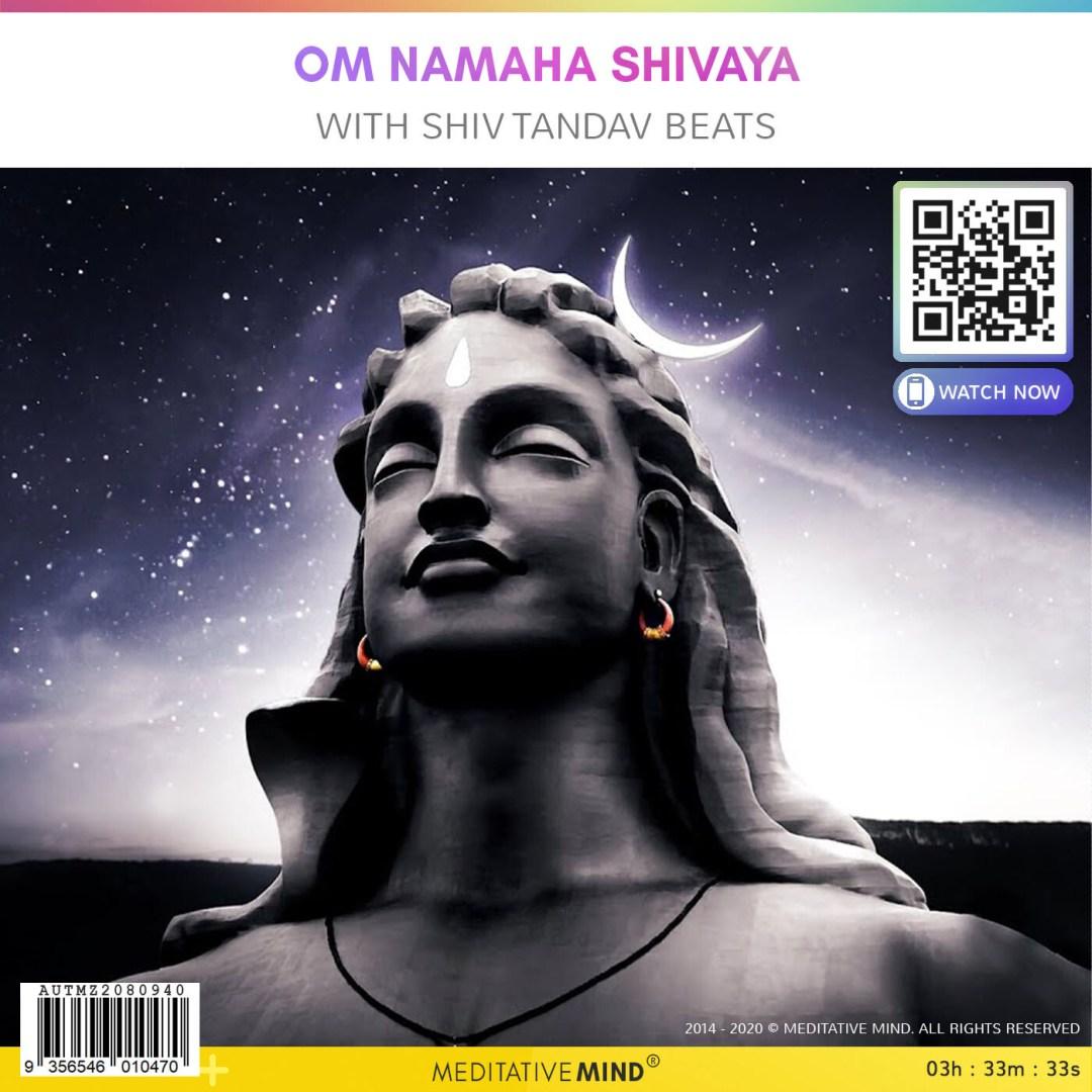 Om Namaha Shivaya - with Shiv Tandav Beats