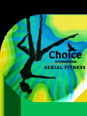Aerial Fitness Teacher Training Course