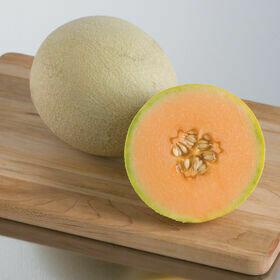 Cantaloupe Plant 4