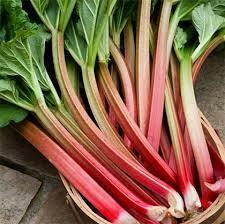 Rhubarb (1lb.)