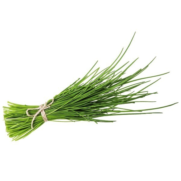 Chives-bunch