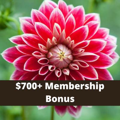 $700+ Level Member Bonus Pick- 1 free pyo bouquet each week  (weather permitting)