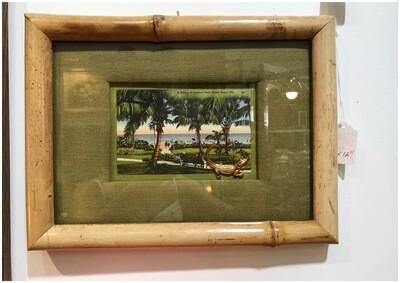 Bamboo Framed Vintage Lammas Park, Miami Fl Postcard