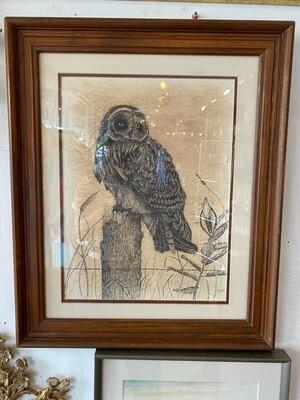 Vintage 1979 Signed & Numbered Framed & Matted Owl