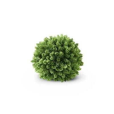 Pineapple Grass Ball 8