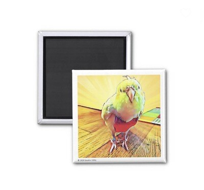 Colorful Cardi Peep Magnet