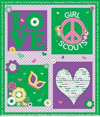 Girl Scout Panel