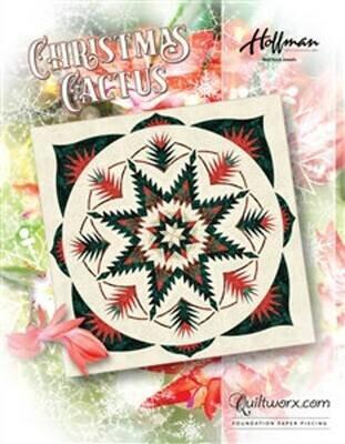 Christmas Cactus JNQ00273P2