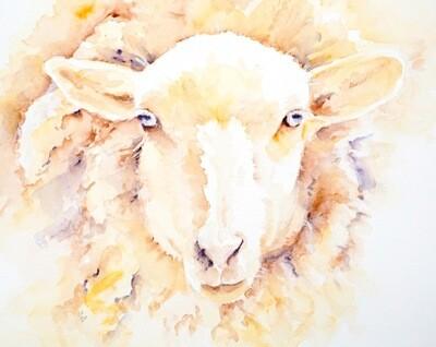 Giclee Sheep Print