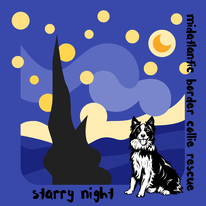 Starry Night 5k