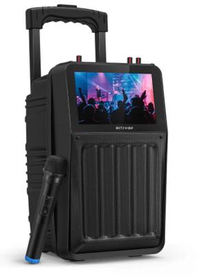 BlitzWolf BW-QM! 30W TFT Altavoz inalámbrico de karaoke