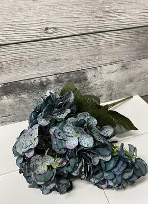 Hydrangea  Bush Blue