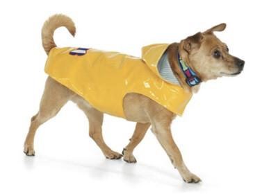 68 Rain Slicker- Yellow Dog Sz 8